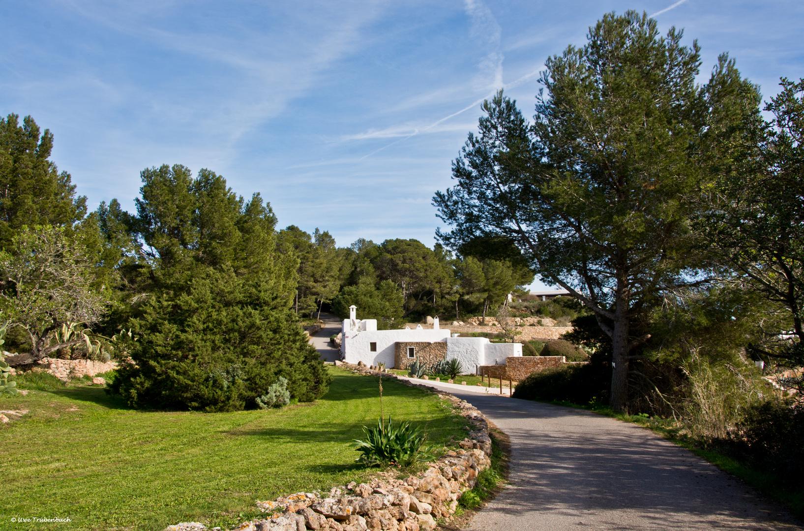 Ibiza / im Tal von Santa Agnès de Corona