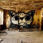 IBUG 2013 ..... Die Katze vom Eisenwerk