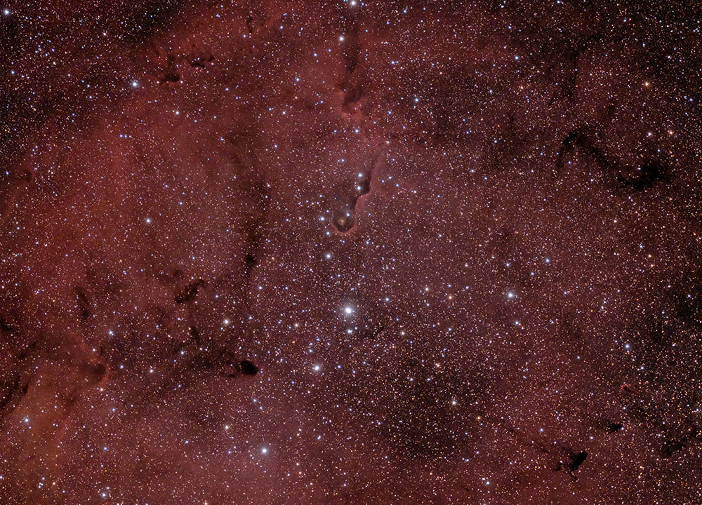 IC1396 Der Elefantenrüssel Nebel