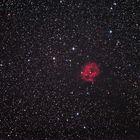 IC5146, der Cocoon Nebula