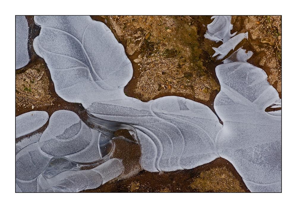 ice-art #2