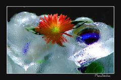 Ice-Fantasy 09