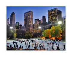 { ice rink @ central park }