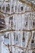 Ice Study III