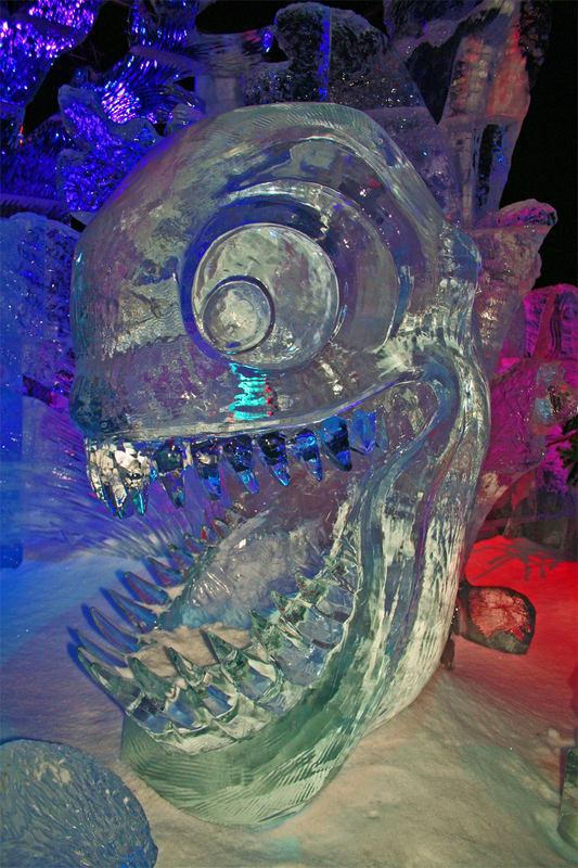ICE WORLD 2006/2007 Bild 2