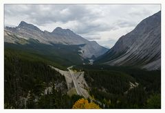 [ Icefield Parkway ]