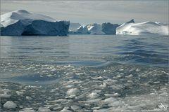 Icefjord - Ilulissat 06