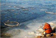 Iceknipsing an der Donau
