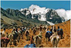 Ich bin dann mal unterwegs...Atacama 2012