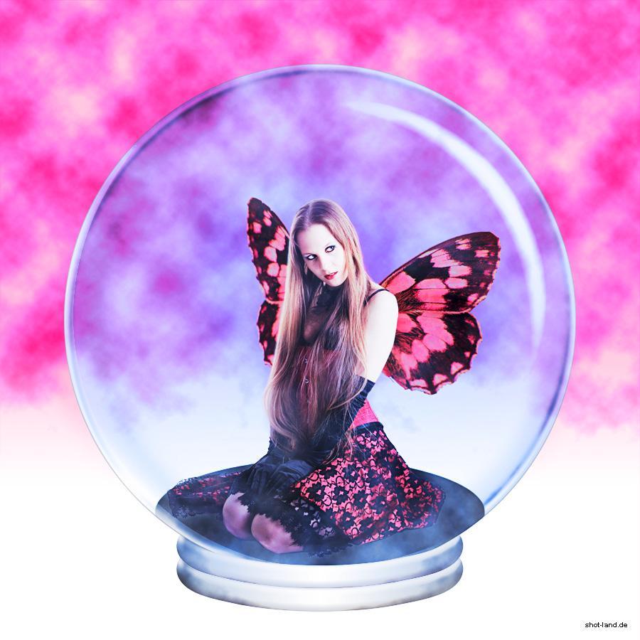 Ich fing den schönsten Schmetterling