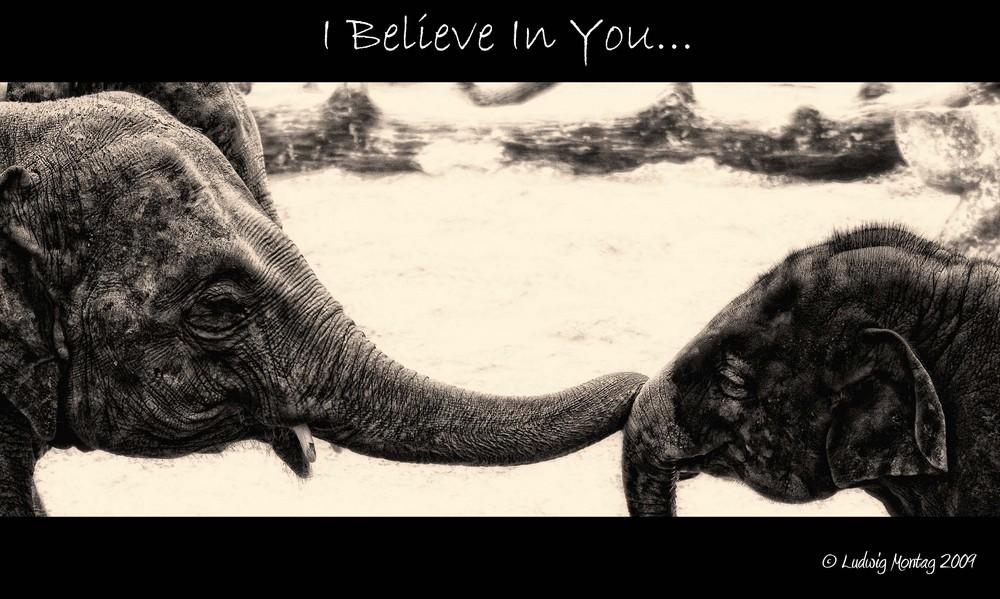 Ich glaub' an dich...