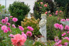ich hab Dir einen Rosengarten versprochen