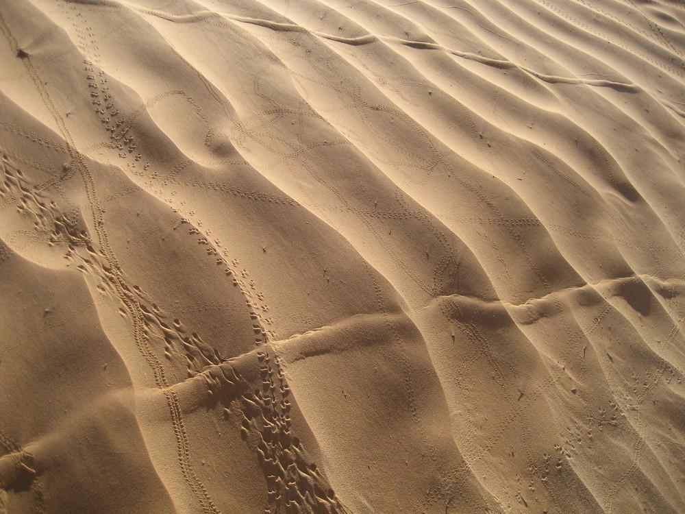 ...ich hab noch Sand in den Schuhen...