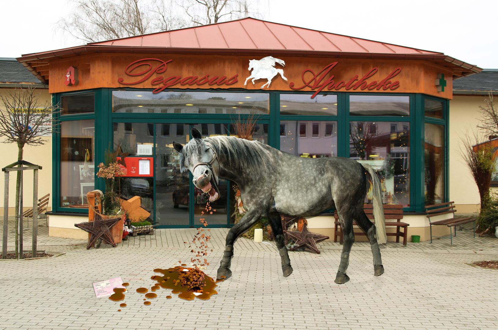 [Bild: ich-hab-schon-pferde-kotzen-sehen-065620...eight=1080]