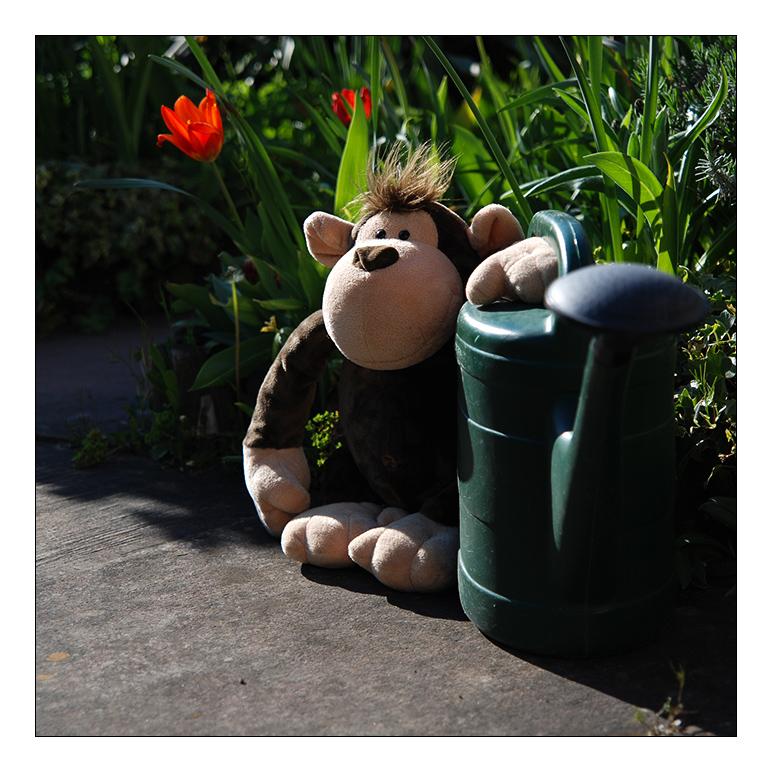 Ich hasse Gartenzwerge!