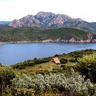 Ich hatte eine Farm auf Korsika