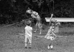 ich kann den Hund in die Luft zaubern