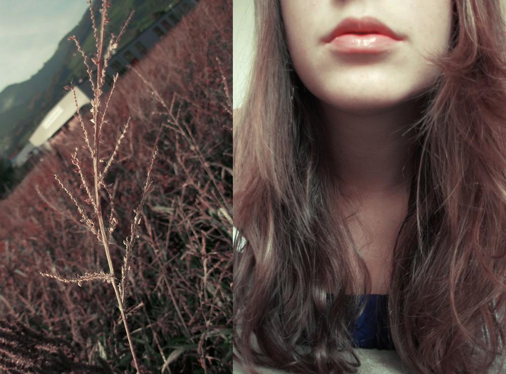 .... ich liebe den Herbst