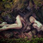 Ich Möchte So In Deinen Armen Einschlafen Foto Bild Wald