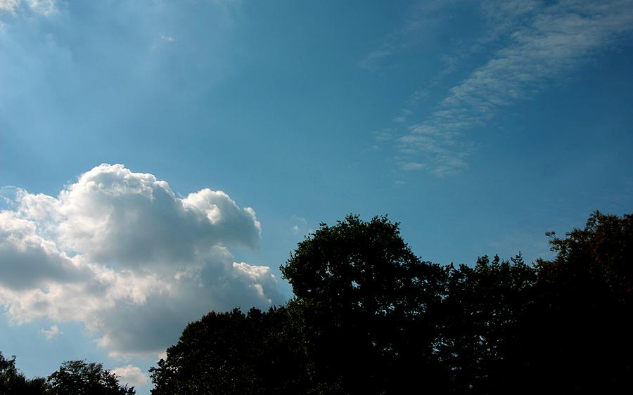 Ich schau den weißen Wolken nach.....