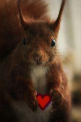 *Ich schenk Dir mein Herz*