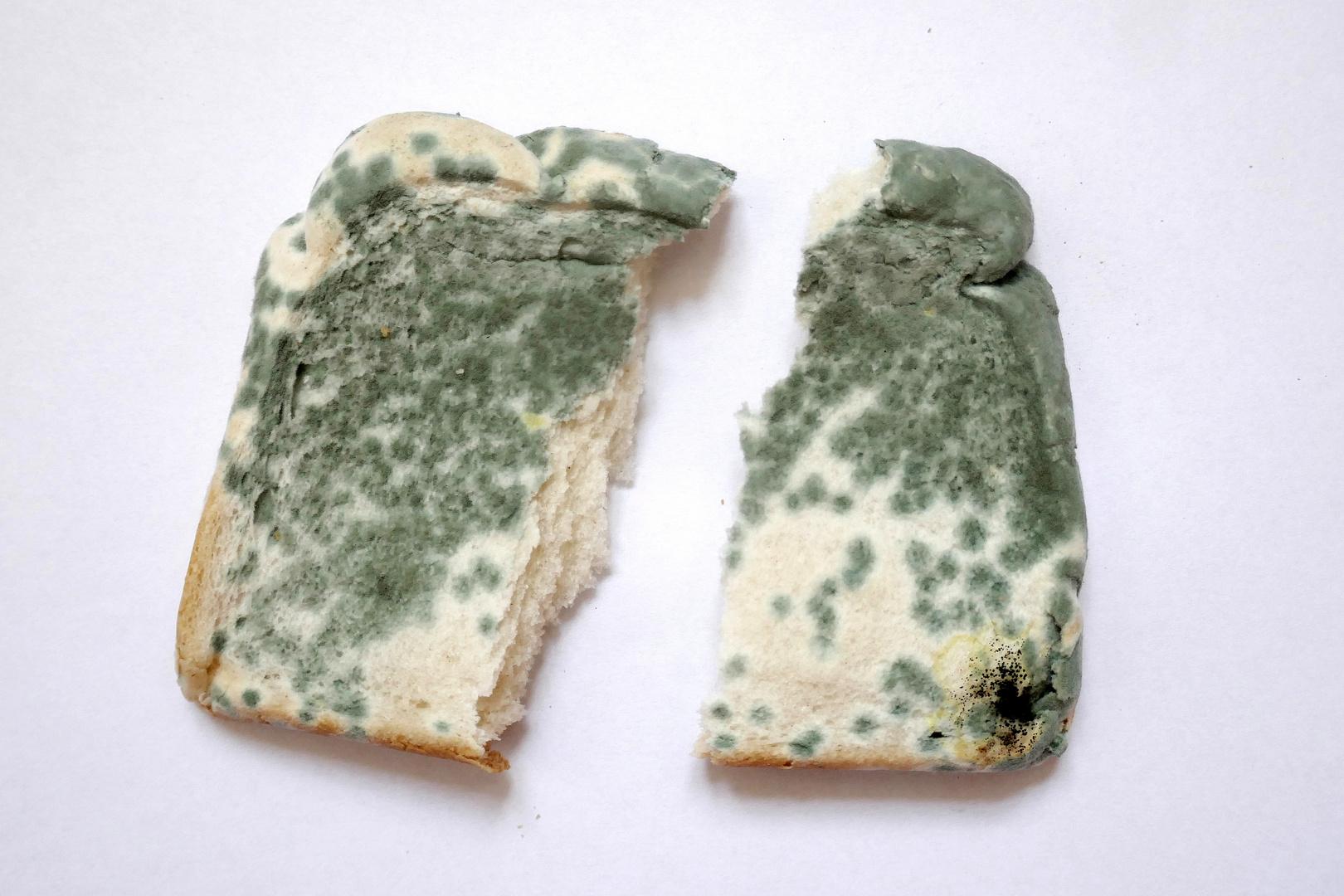 ich teile mein letztes Brot mit euch, ja, so bin ich