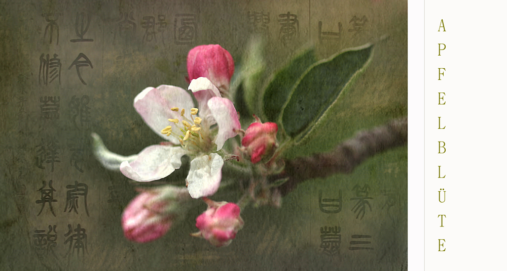 Ich will Frühling