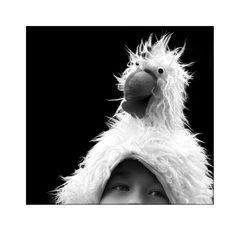 Ich wollt´ ich wär ein Huhn.....