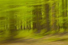 ICM Wald
