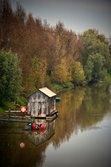 Idylle am Altrhein
