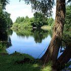 Idylle am Brielower Loch