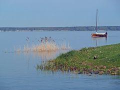 Idylle am Steinhuder Meer