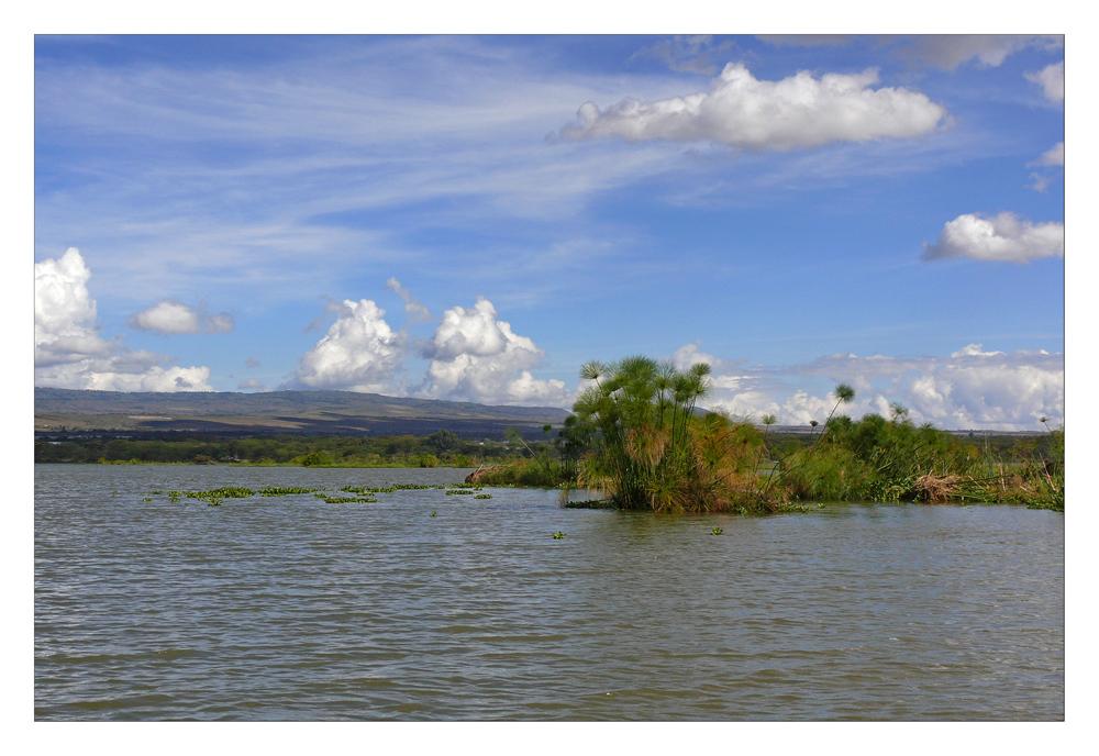 Idylle pur auf dem Naivasha See