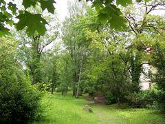 Idylle Weimarer Friedhof