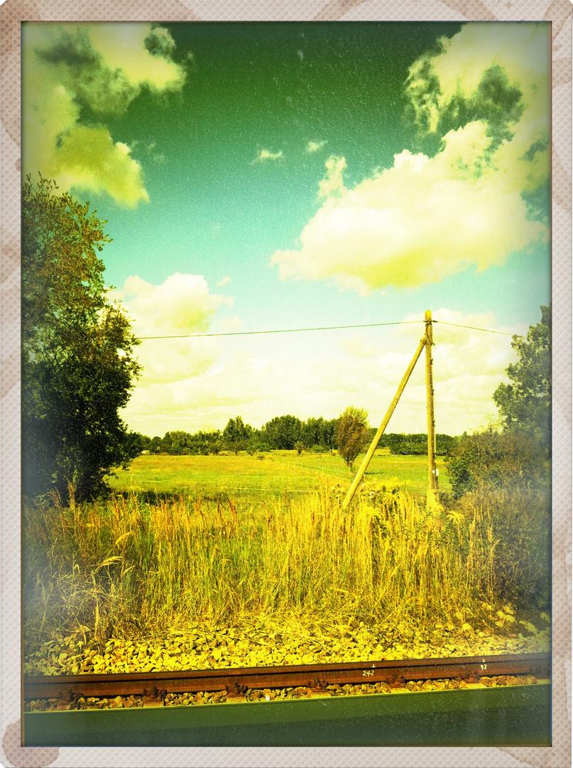 Idyllische Wiesenlandschaft