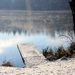 Idyllischer See im Wald