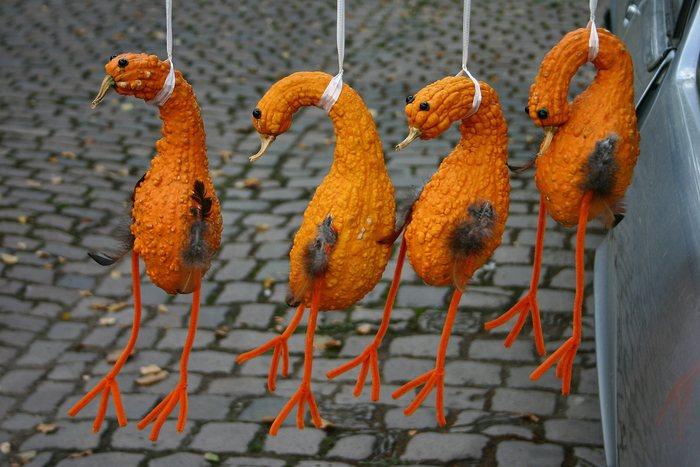 Ihrer Hühner waren´s drei....