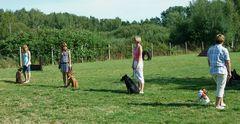 """II. Tag der offenen """"Hundetür"""" - Noch einmal die """"kleine Gruppe"""" °°°"""