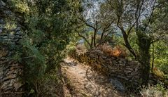 Ikaria - On the footpath to Ai Giannis