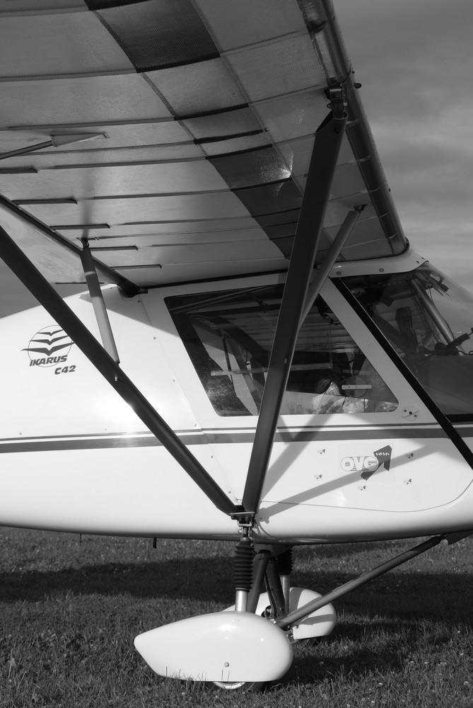 Ikarus C42 Foto Bild Sport Flugsport Motorflug Bilder Auf