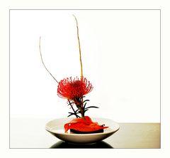 Ikebana #3