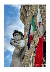 il biancone di piazza della signoria a Firenze