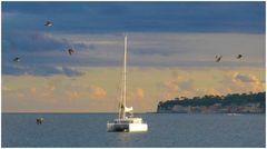 Il catamarano, i gabbiani e Posillipo
