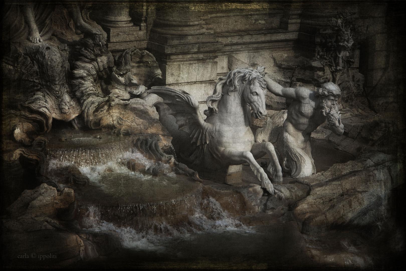 il cavallo placido
