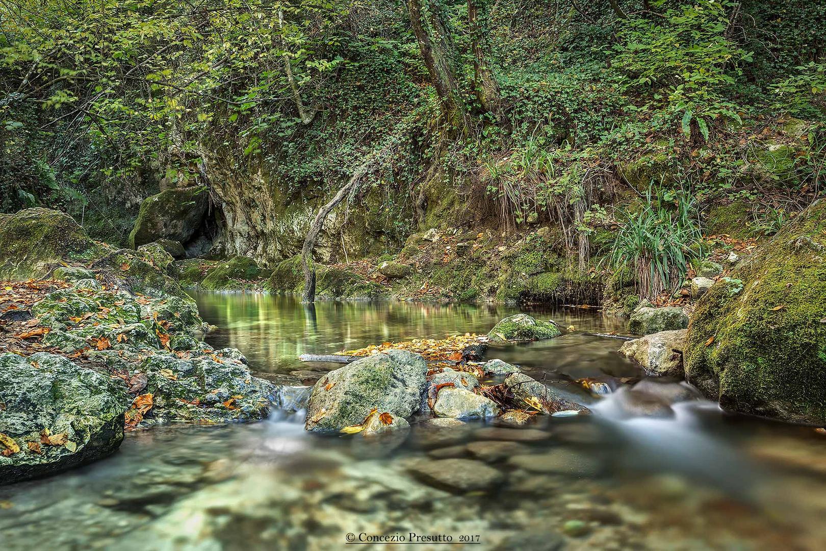 Il fiume Orte