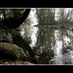 il fiume qui vicino senza neve