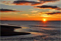 # il gabbiano sulla spiaggia .....