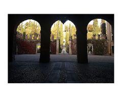 il giardino autunnale di Palazzo Giusti..