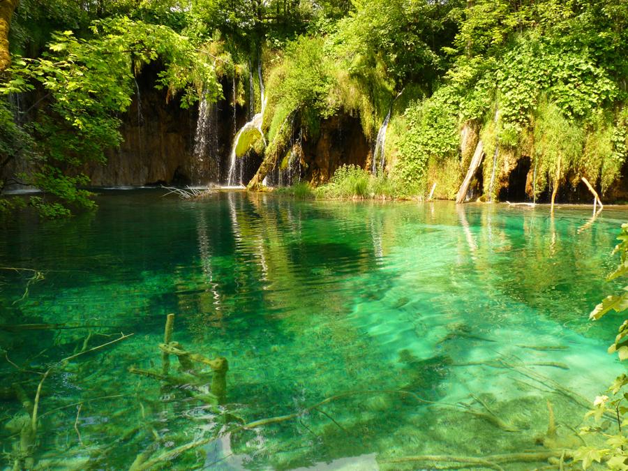 Il giardino dell 39 eden foto immagini paesaggi laghi e - Portano acqua ai fiumi ...