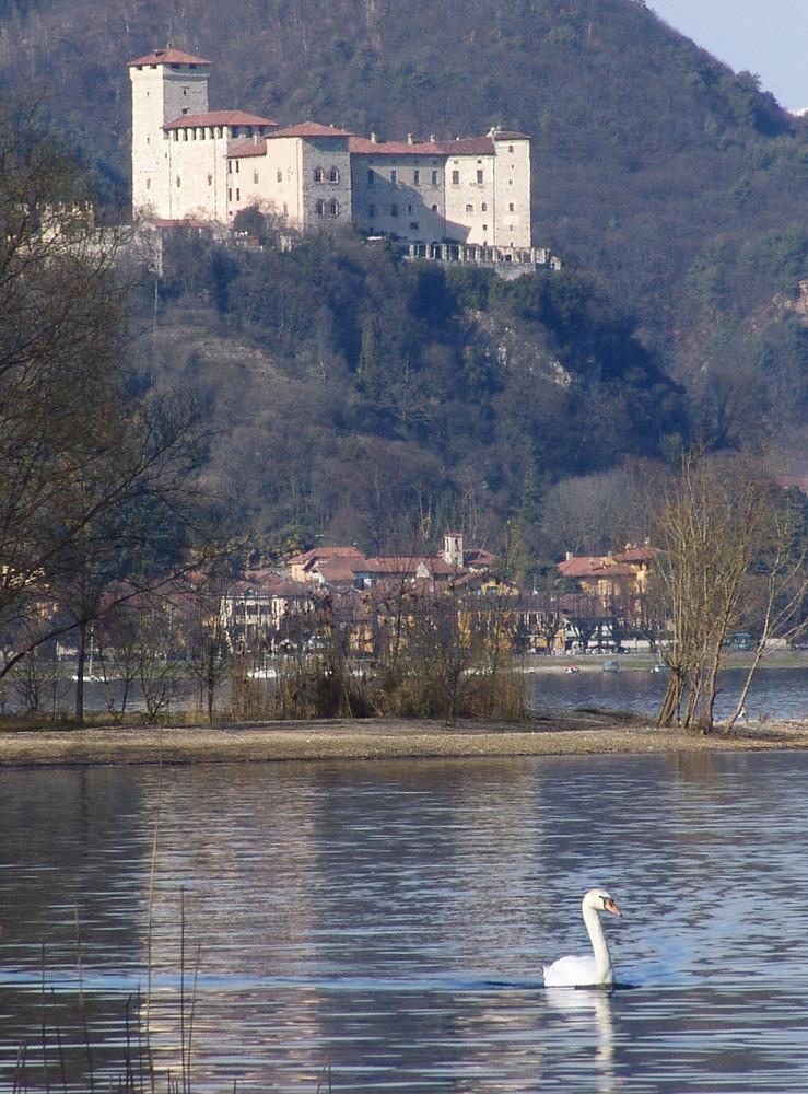 Il lago del cigno